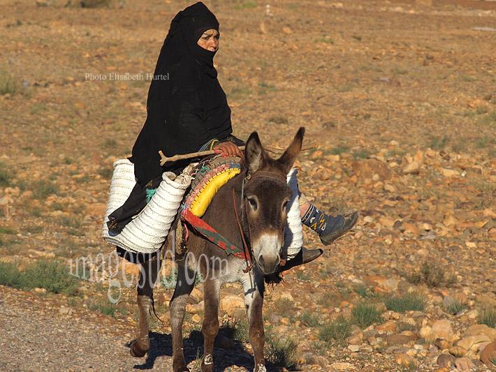 Femme en noir sur son âne, Maroc
