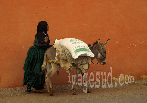 Jeune femme poussant son âne, vie quotidienne des femmes au Maghreb
