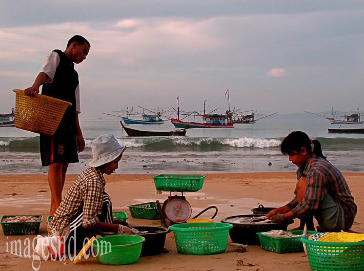 Femmes de pêcheurs nettoyant le poisson sur la plage, Thaïlande, femmes du monde
