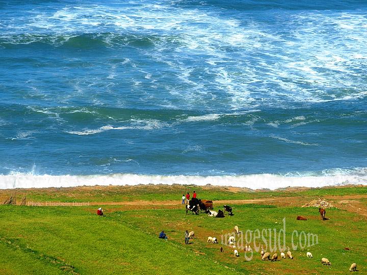 Paysage du Maroc : côte Atlantique battue par la houle