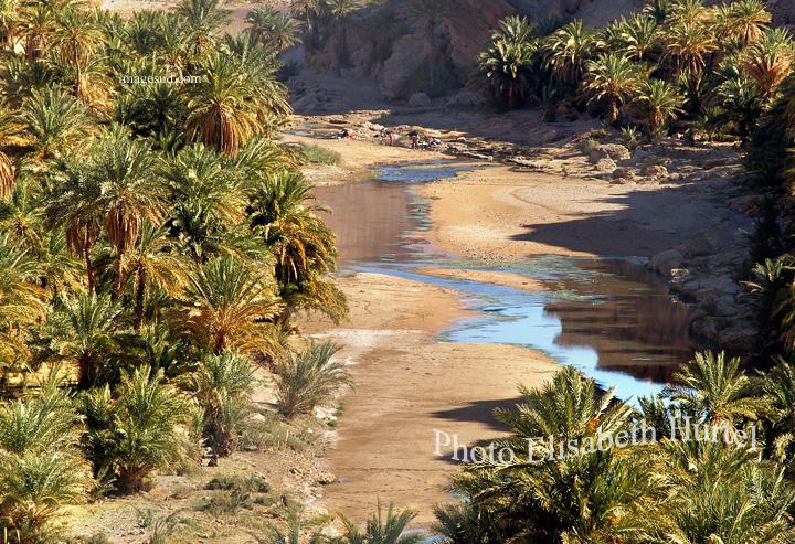Oued et oasis au sud Maroc