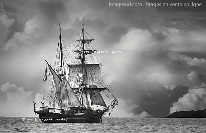 Grand voilier sous voiles. Poster