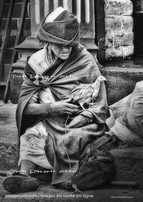 L'indienne au poulet, Equateur, photo noir et blanc