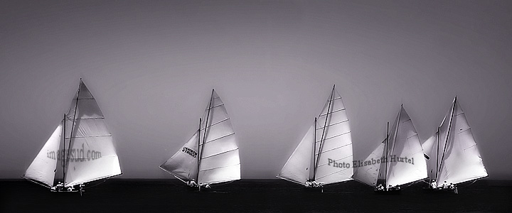 Voiles sur l'horizon, en mer