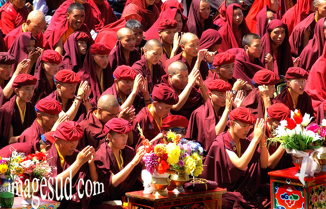 bouddhisme-moines-priere-p2-7313