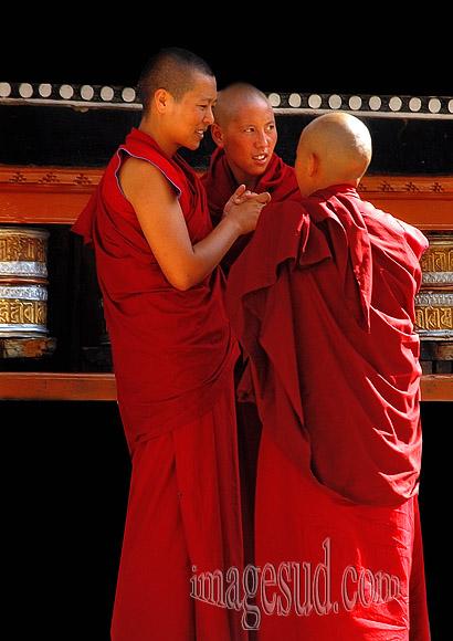 moines-bouddhisme-p2-5862