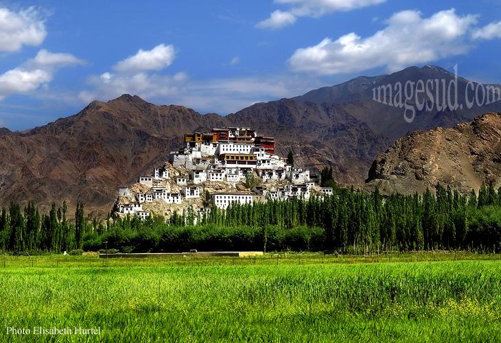 Monastère bouddhiste (gompa) de Thiksey (Tikse) au Ladakh, vue générale