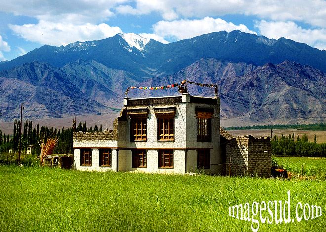 Maison traditionnelle, vallée de l'Indus, Ladakh, Himalaya