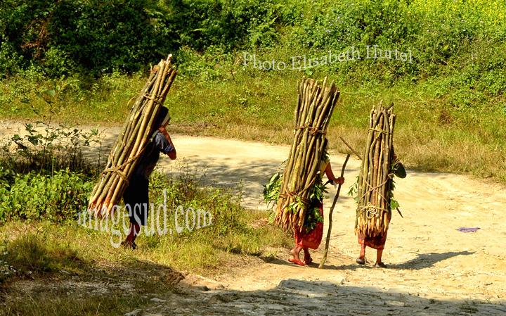 Nepal : sur un chemin de montagne. Nepal : on a mountain path